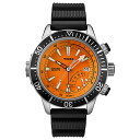 Timex Watch men's domestic genuine インテリジェントクォーツ depth TIMEX watch T2N812 02P13Dec13