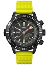 Timex watch men's domestic regular article インテリジェントクォーツデプス TIMEX clock T2N95802P13Jun14