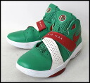 ■ NIKE (Nike) ■ AIR MAX SWEEP Amare Stoudemire ■ green ■ 27.5 cm ■