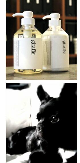 安全性が高く、人の手肌にもやさしい洗い上がりが特徴の犬用シャンプー