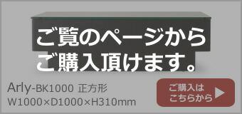 Arly-BK1000 �����