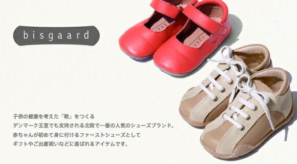 bisgaard - �ӥ���