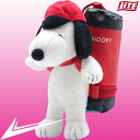 Ball case Snoopy fs3gm