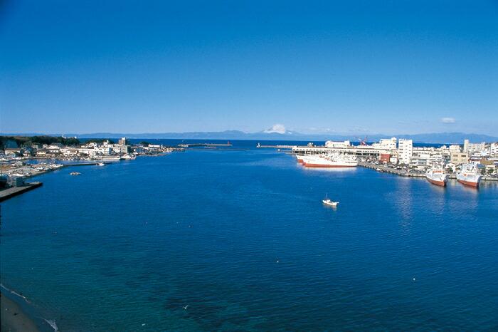 三浦三崎港の写真 地元のマグロ漁師や高級ホテルと同等の鮮度・品質のマグロをご自宅の食卓へ...