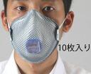 MOLDEX dust mask R95 10 sheets