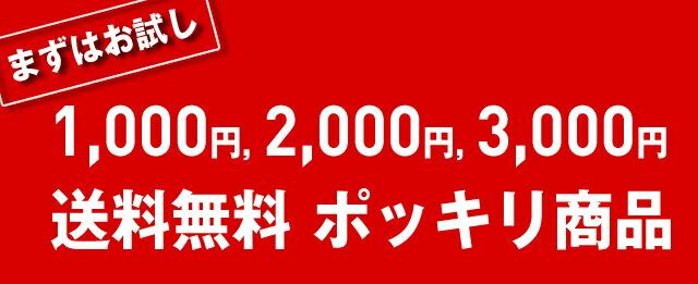 まずはお試し!送料無料1,000円、2,000円、3,000円ポッキリ商品
