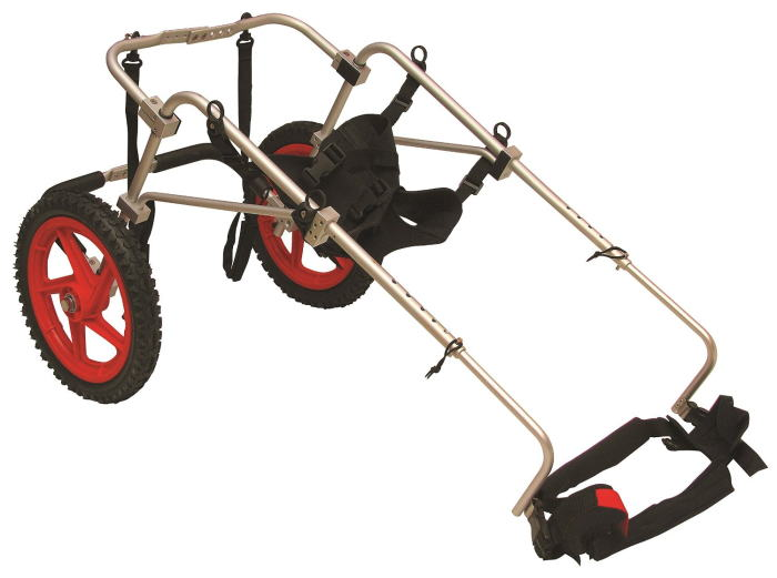Коляска для таксы инвалида