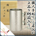 ★★★(one piece) ★ Osaka tin device beer mug ripples (the small) / Christmas / year-end present / birthday / present / present / celebration / with limited original roller coaster