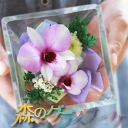 Orchids Glass Bouquet [Square type for Funeral], dry flower Made in Japan