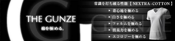 THE GUNZE(メンズ)