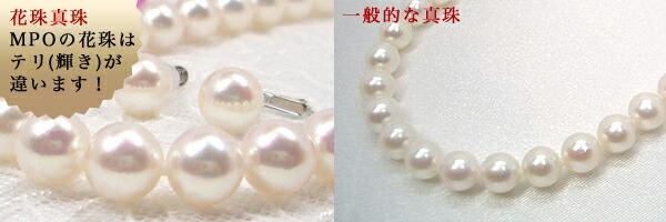 一般的なあこや真珠との比較画像