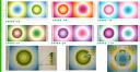 Hawaiian quilt-patchwork ☆ ☆ Cathy gradient panel