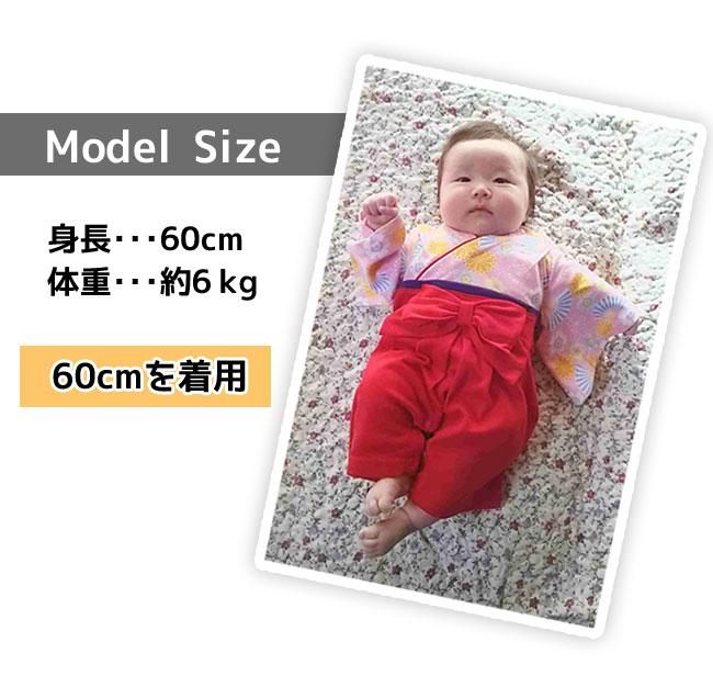248505 model