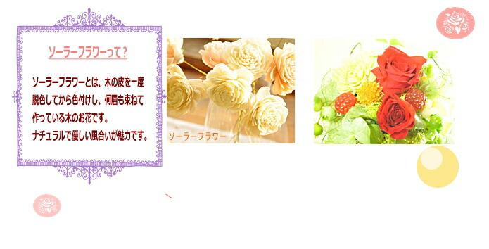 【ソーラーフラワー】プリザーブドフラワーのお店ムニュムニュ【Flower Munyu Munyu】