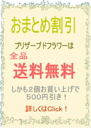 【送料無料商品】プリザーブドフラワーのお店ムニュムニュ【Flower Munyu Munyu】