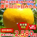 It is hard to obtain it! 5 kg of Okuhirayama three days mandarin orange mixture size that the expert of the higher winning prize makes with a brand production center competitive show to the people in the know