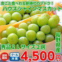 "2 grape ""ハウスシャインマスカット"" 秀品 2L size bunches (more than 900 g) of the new age when every skin is edible from Nagano"