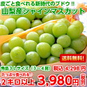 More than grape ♪ large-sized シャインマスカット 3L size 秀品 2 kilos which is edible together with skin from Yamanashi (entering 3-4 bunches)