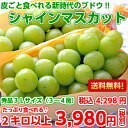 Eat edible grape ♪ together with skin, and meet it; a perfect score! More than overswinging シャインマスカット 3L size 秀品 2 kilos (entering 3-4 bunches)