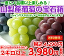 "シャインマスカット of the ♪ topic that a grape enthusiast cannot overlook enters by all means! The taste of the assorted manager recommended grapes autumn! 2 kg of ""jewel boxes of the grape from Yamanashi"""