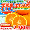 Inside the bag thin-not fragrant hybrid citrus Tangerine like a Tangerine, not new varieties of attractive topics ' swelling Princess ' su products 2.5 kg (Hokkaido, Okinawa and remote islands are 300 yen)