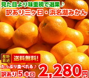 Looks not good taste is outstanding ♪ translation and 3 months, and Hamana Lake Orange plenty of 5 Kg