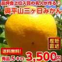 Hard to get! Brand producing fair in the know make a celebrity of the top finishers okudaira Su products Orange Mountain three months, 5 kg