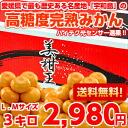 Premium Orange Kingdom Ehime mandarin oranges! High Brix ripe Mikan the Mikan King size L M 3 kg (Hokkaido, Okinawa and remote islands are 300 yen)