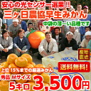 Three months, Mikan ( wase ), M size 5 kg (Hokkaido, Okinawa and remote islands are 300 yen)