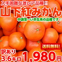 Gigantic rare breed unique to production! Light in the bag-not early maturing cultivar ♪ red kannagi Yamashita red 3 kg+20% bulking