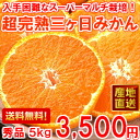 The something thick fruit juice is mandarin orange 秀品 5 kg for unrivaled article ♪ supermarket multi-super full ripeness three days