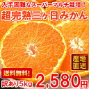 Quirky concentrated fruit juice delicious ♪ super multi Super ripe mikkabi Mikan John and 5 kg (Hokkaido, Okinawa and some islands are 300 yen)