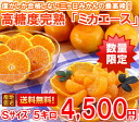 Maximum of three months, luxury brands high Brix ripe three months, orange 'ミカエース's size lots of 5 kg (Hokkaido, Okinawa and remote islands are 300 yen)