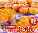 It is hard to obtain it! 3 kg of tree accomplishment full ripeness three days mandarin orange heart (heart) small size