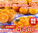 It is hard to obtain it! 5 kg of tree accomplishment full ripeness three days mandarin orange heart (heart) small size
