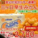 5 kg of three days mandarin orange (premature delivery) A product medium size (in Hokkaido, Okinawa, the remote island separately 300 yen)