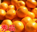 Three days, 5 kg of Hamanako mandarin oranges of the personal shipment