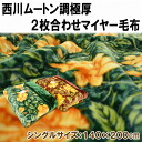 Nishikawa ファータイプ 2 piece suit Meyer blanket single size 140 x 200 cm