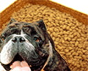 Domestic free Super Premium dog food 300 g