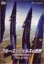 브르엔제르스의 세계~SKY OF BLUE~(DVD)