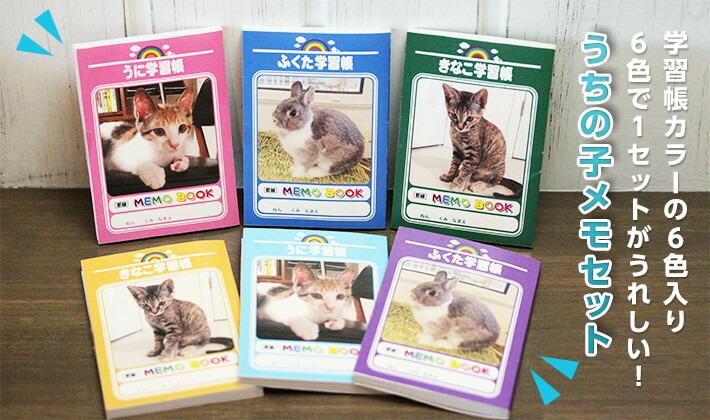 学習帳カラーの6色入り 6色で1セットがうれしい! うちの子メモセット