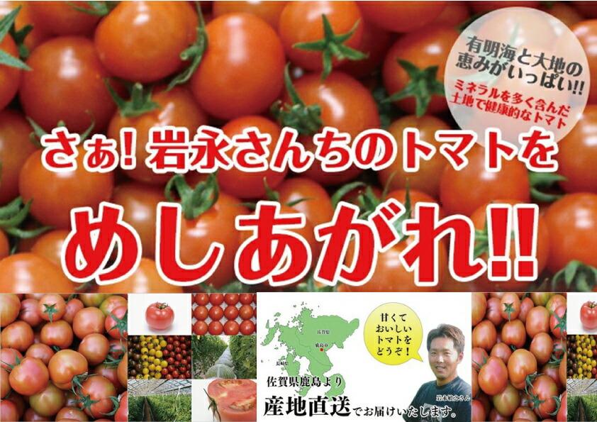 岩永さんちのとまと ミニトマト 赤 2kg【産地直送】