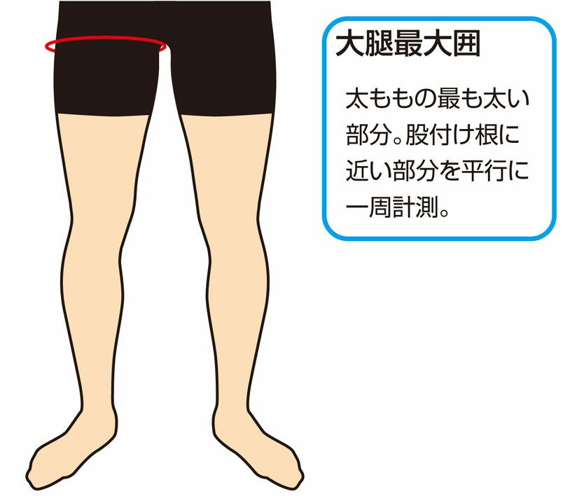 大腿最大囲