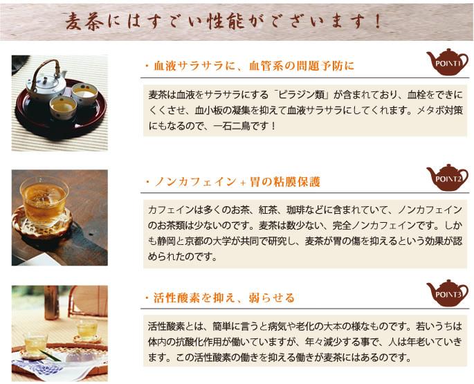 飛騨むぎ茶10