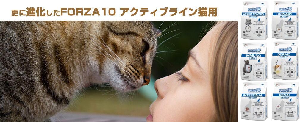 フォルツァ10 猫用NEWアクティブライン