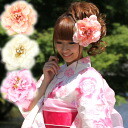 "It is ""volume accent color corsage hair ornament yukata yukata coming-of-age ceremony [kami] in Japanese dress softly"""
