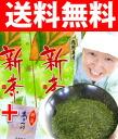 """""""Time seal"""" new tea one coin Kagoshima Island tea 100 g × 2 book asatuyu a decoction (6 g) with a bonus! A delicious green tea with 2014 season tea! Kagoshima production rough build new tea"""