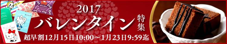 スイーツ 通販 バレンタイン 義理チョコ ギフト プレゼント 2016年 2017年 カステラ かすてら 通信販売 ランキング ショッピング プレゼント オンラインショッピング 買い物 人気 贈り物 贈答品
