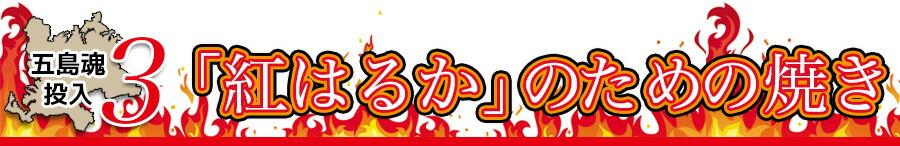 ポイント3:紅はるかのための焼き