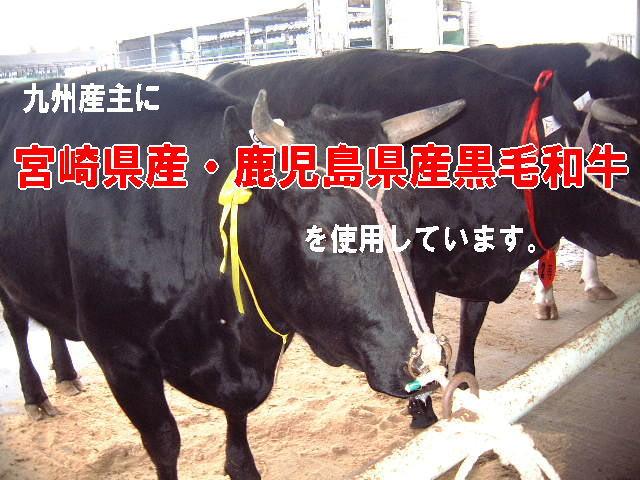 九州産和牛